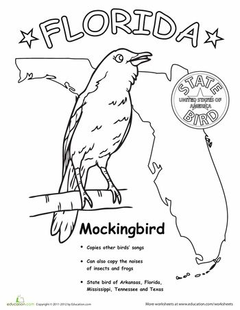 350x453 Florida State Symbols Coloring Pages Best School Projects Images
