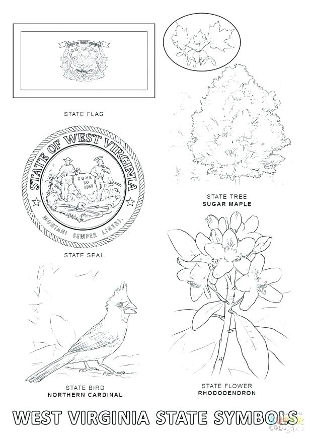618x872 State Symbols Coloring Pages Click To See Printable Version