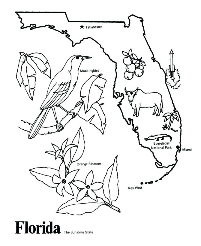 670x820 State Symbols Coloring Pages State Outline Coloring Page I Copy