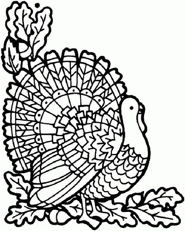 Thanksgiving Coloring Pages For Adults Free