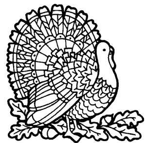 300x294 Simple Thanksgiving Coloring Pages