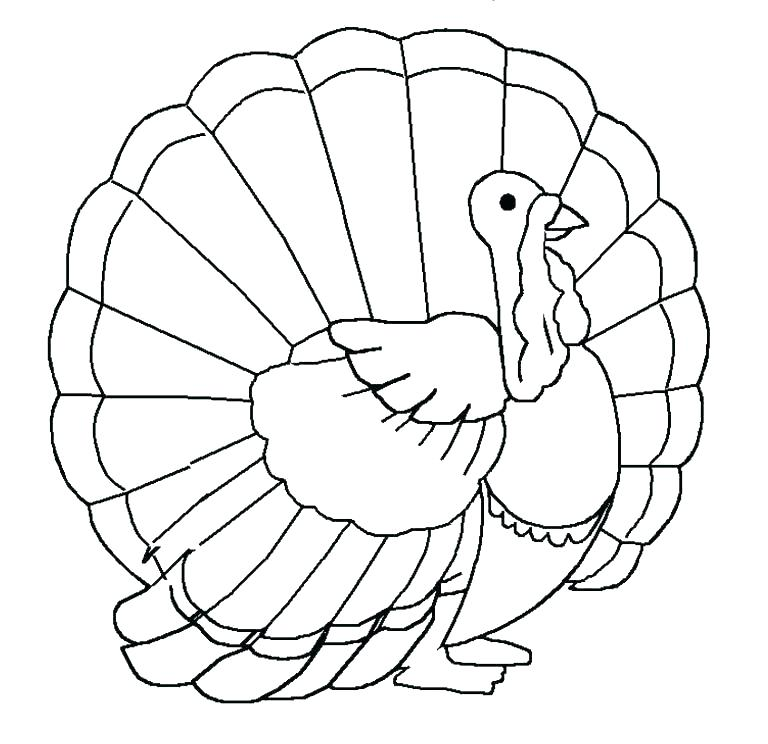 768x744 Turkey Color Page