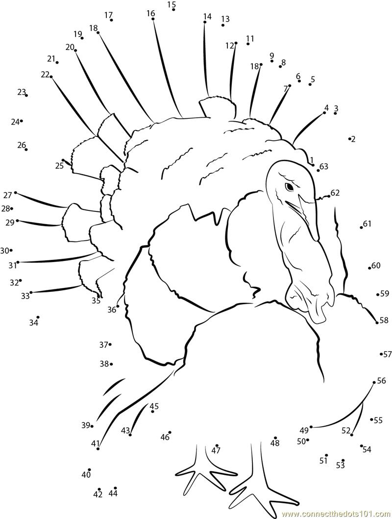 800x1058 Thanksgiving Connect The Dots Printables Worksheets For All