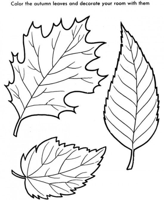 550x672 Fall Autumn Leaves Coloring Page
