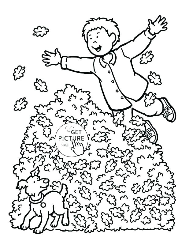 618x813 Fall Leaves Coloring Pages Printable