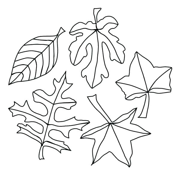 600x583 Coloring Pages For Fall Free Printable Coloring Pages Fall Autumn