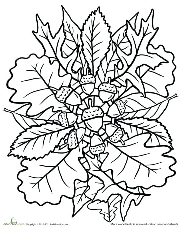 609x764 Thanksgiving Mandala Coloring Pages Free Printable Thanksgiving