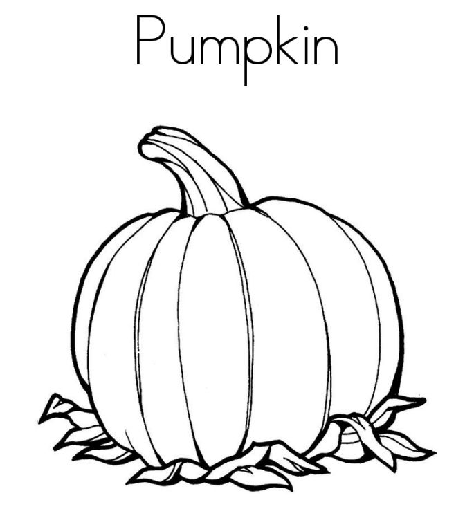 685x749 Pumpkin Picture To Color Pumpkin Color Pages Printable Pumpkin