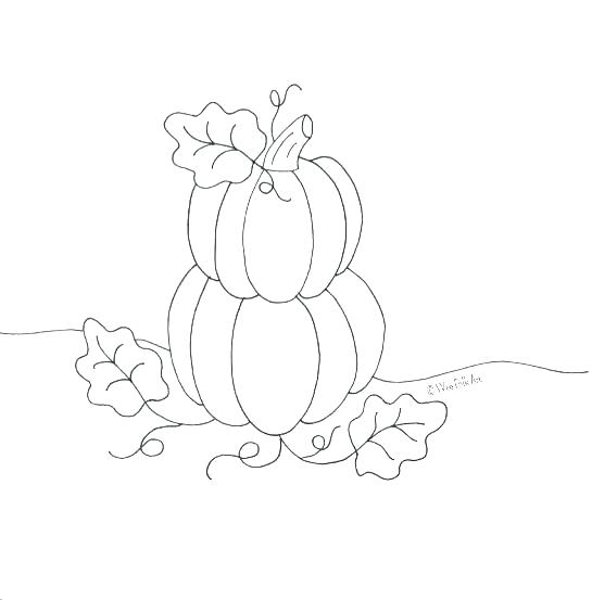 545x553 Coloring Page Of A Pumpkin Pumpkin Coloring Template Colouring