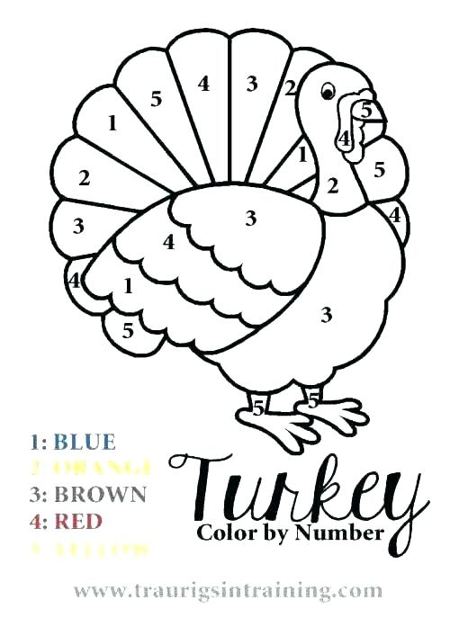 500x687 Coloring Book Turkey Pictures To Color Page Pages For Thanksgiving
