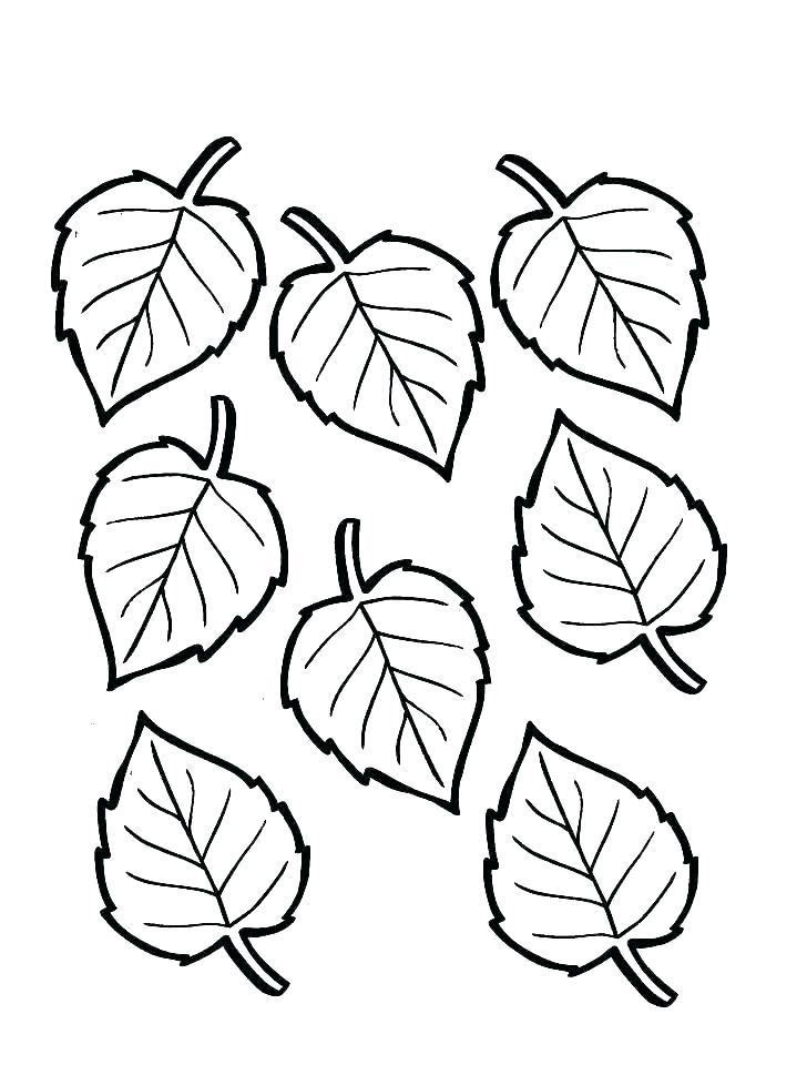 728x969 Coloring Page Of Leaves Leaves Coloring Pages Printable Fall