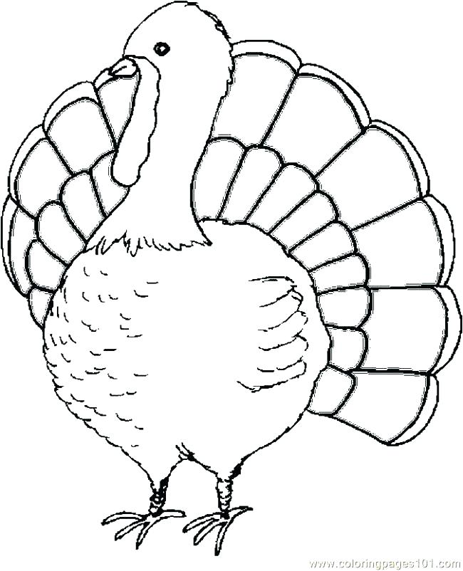 650x802 Thanksgiving Turkey Coloring Page Picture Of A Colored Turkey