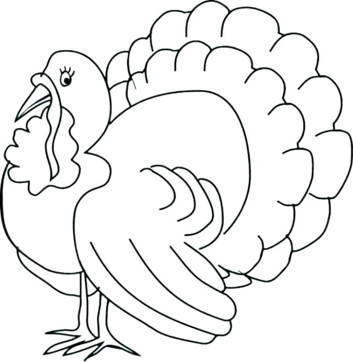 700x717 Turkey Coloring Pages Printable Free Coloring Page Of Turkey