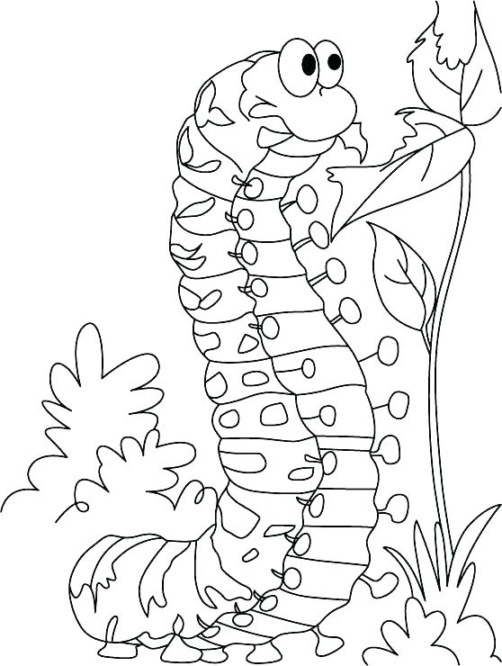 558x740 Very Hungry Caterpillar Coloring Pages Very Hungry Very Hungry