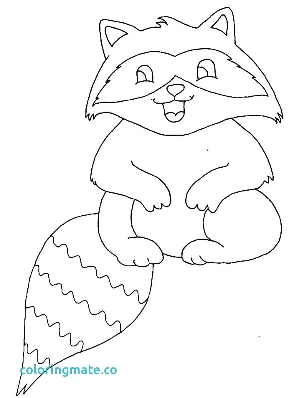 600x800 The Kissing Hand Coloring Pages Raccoon Coloring Great Raccoon