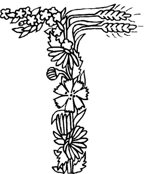 The Letter T Coloring Pages