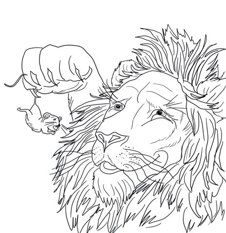 465x480 The Big Lion Caught A Tiny Mouse Coloring Page Coloring Pages
