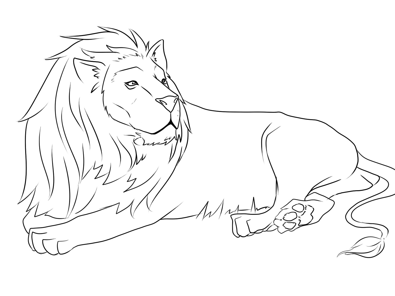 1600x1200 Coloring Pages Draw A Lion For Kids Elegant High Quality Free