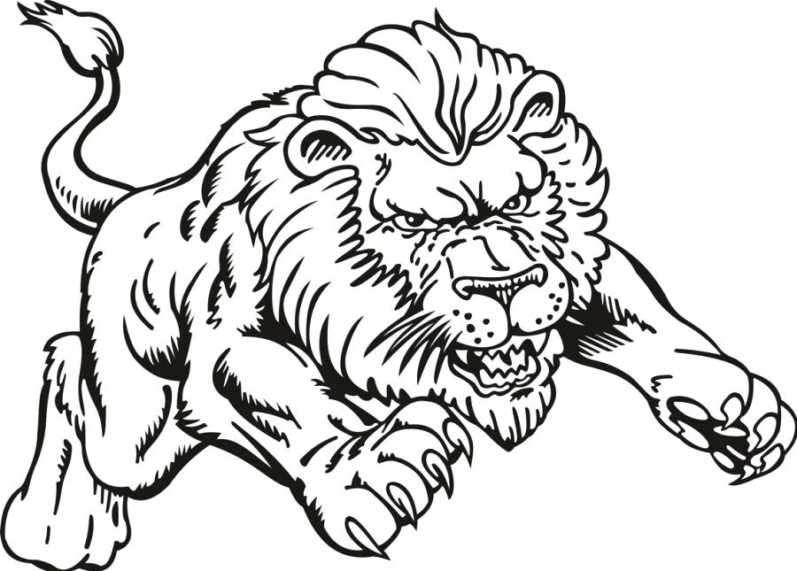 900x645 Coloring Pages Of Lions Coloring Pictures Of A Lion Pin Drawn Lion