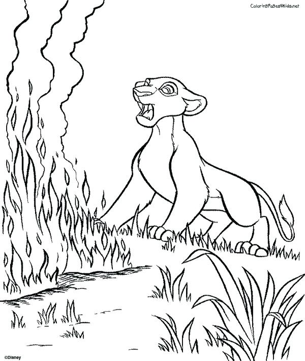 600x709 Lion King Coloring Pages King Coloring Page Lion King And The Lion