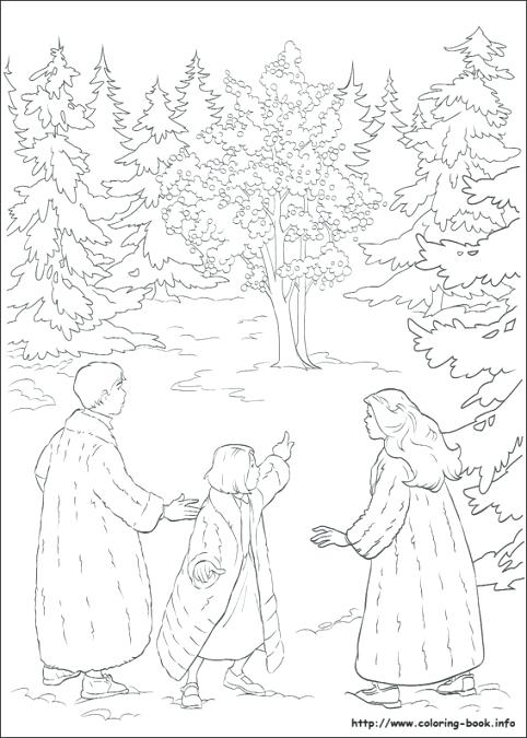 482x675 The Lion The Witch And The Wardrobe Coloring Pages Horror