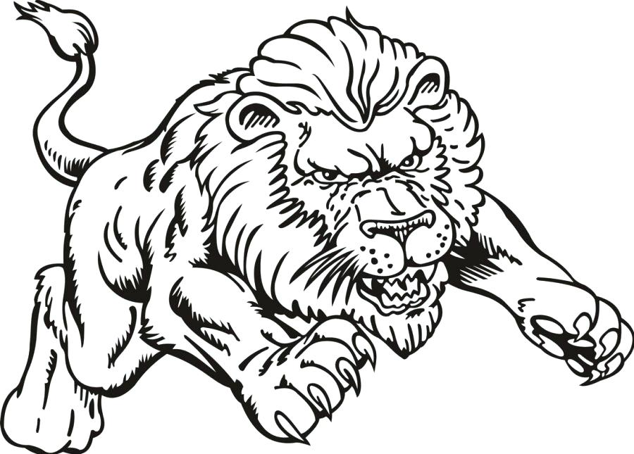 900x645 Coloring Page Lion Lion The Great King Of Jungle Lion Coloring