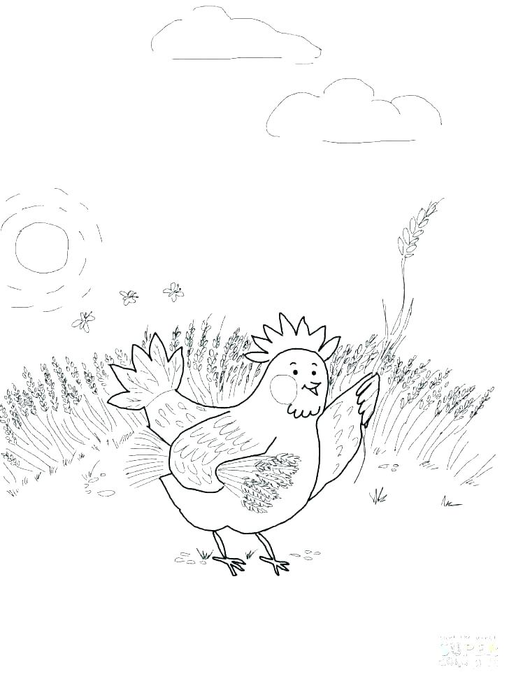 728x971 Hen Coloring Page