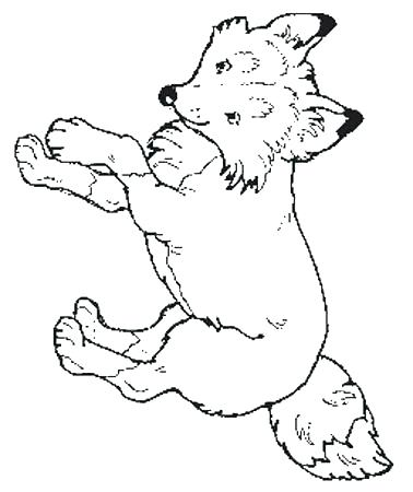 378x450 The Mitten Coloring Page The Mitten Coloring Page Fox Coloring