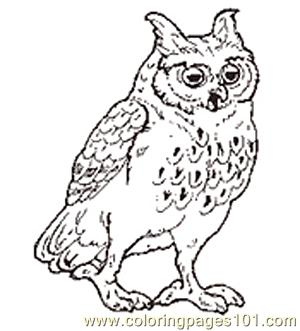 300x331 The Mitten Mural Owl Coloring Page Reversed Coloring Page