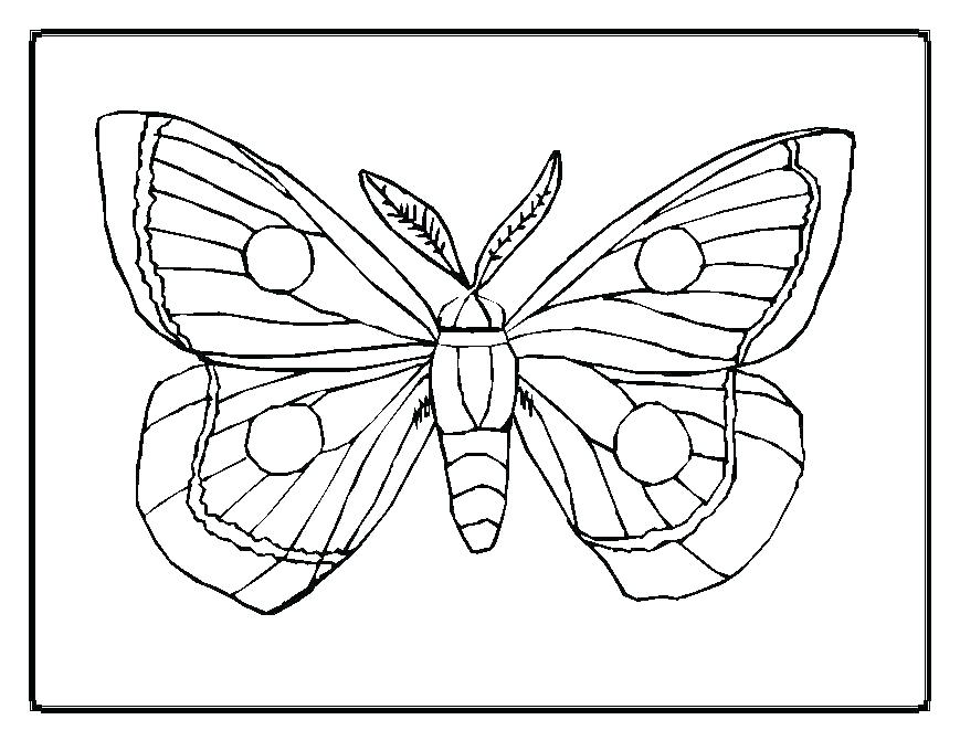 869x671 The Official Web Site Coloring Page Very Hungry Caterpillar