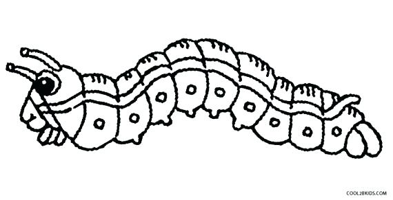 570x291 The Very Hungry Caterpillar Coloring Pages Interesting Free