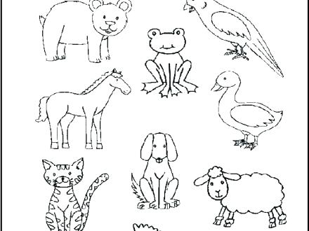 440x330 Coloring Pages Coloring Pages Brown Bear Coloring Page Coloring