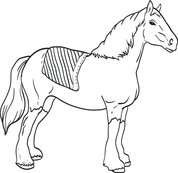 700x678 Horse Head Coloring Page This Is Horse Head Coloring Page Pictures