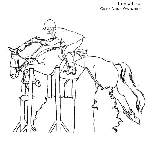500x500 Thoroughbred Jumper Coloring Page Side View