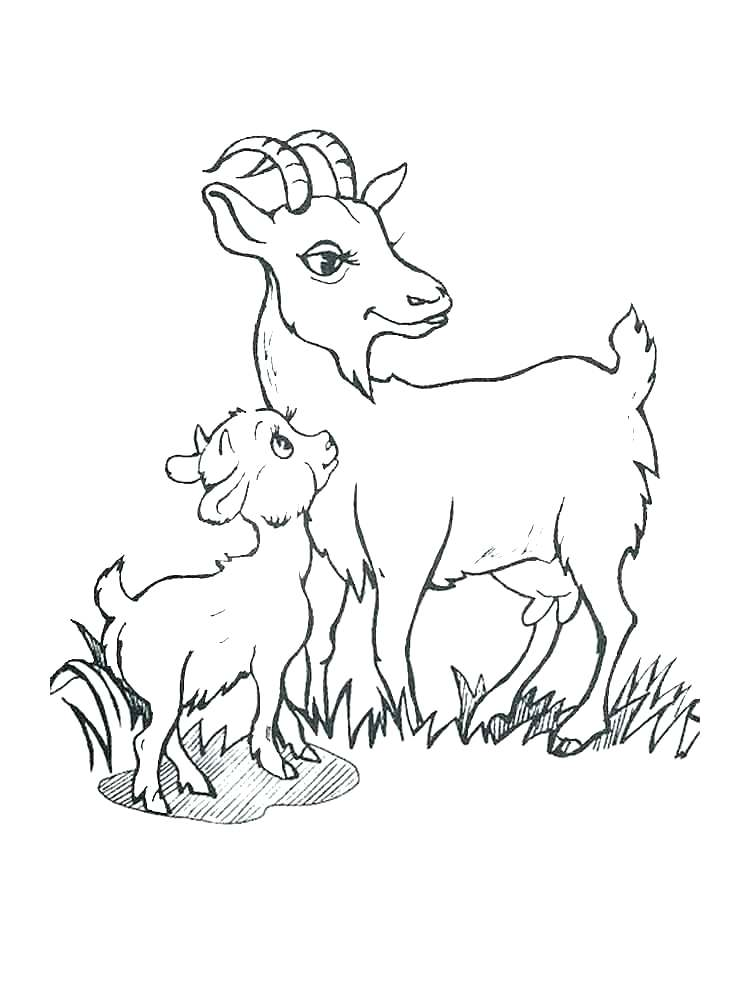 750x1000 Goat Coloring Billy Goats Gruff Coloring Pages Mountain Goat