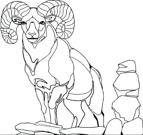 567x535 Three Billy Goats Gruff Coloring Pages Goat Coloring Page Mountain