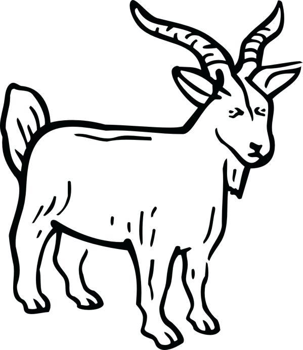 599x693 Three Billy Goats Gruff Preschool Printables Kids Coloring Billy