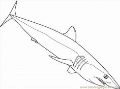 236x176 Sea Animals, Ferocious Shark Sea Animals Coloring Page