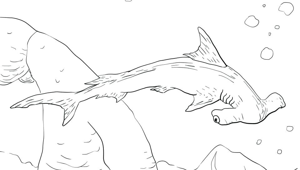960x544 Shark Coloring Pages Hammerhead Printable Colouring Games Shark