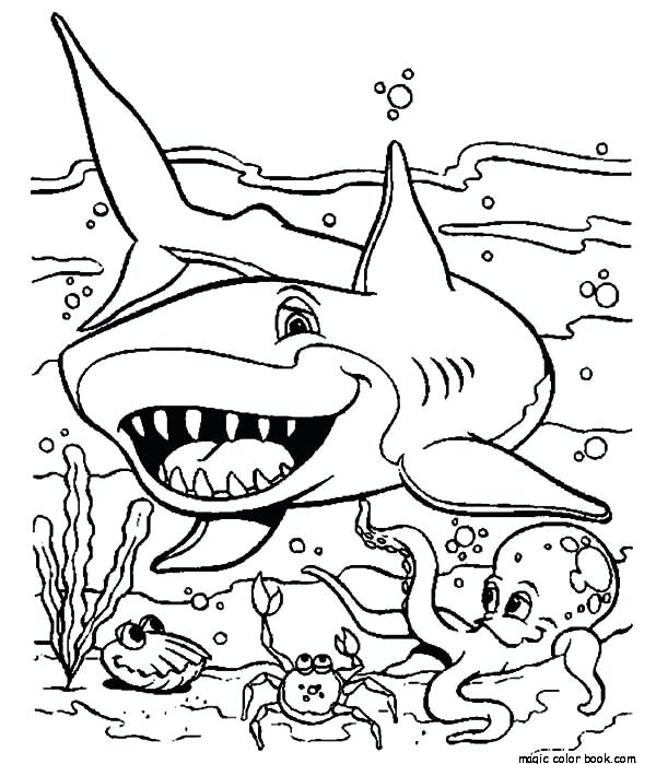 600x699 Shark Coloring Pages Sea Shark Coloring Pages To Print Out