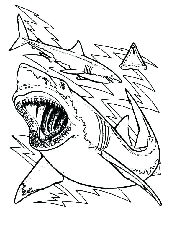 600x781 Shark Coloring Pages To Print Great White Shark Coloring Pages