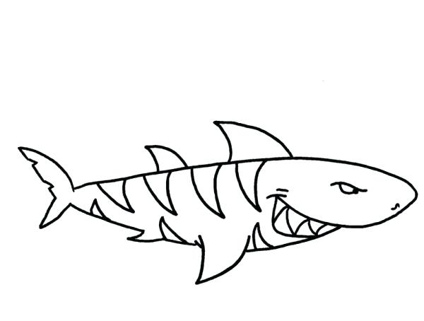 600x454 Tiger Shark Coloring Pages Free Coloring Pages Thresher Shark