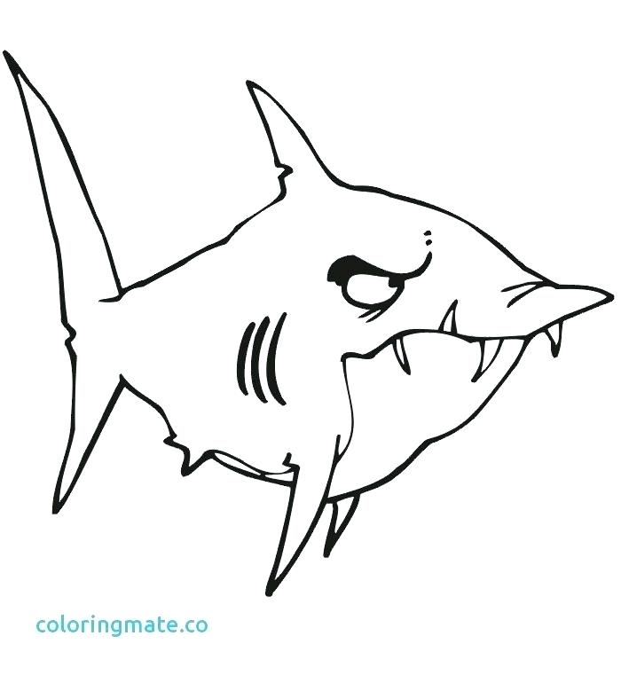 700x761 Coloring Page Of Shark Professional
