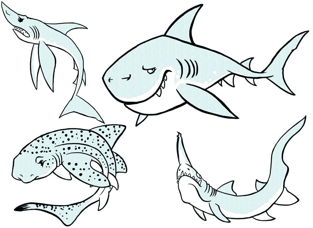 1024x745 Hammerhead Shark Coloring Pages