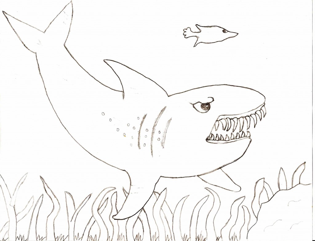 1024x785 Drawn Tiger Shark Colouring Page