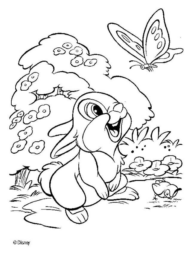 652x850 Thumper Coloring Pages