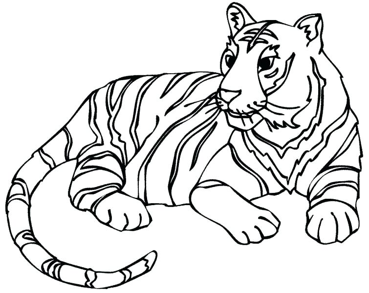 755x600 Tiger Coloring Pages Tigers Coloring Pages Free Tiger Coloring