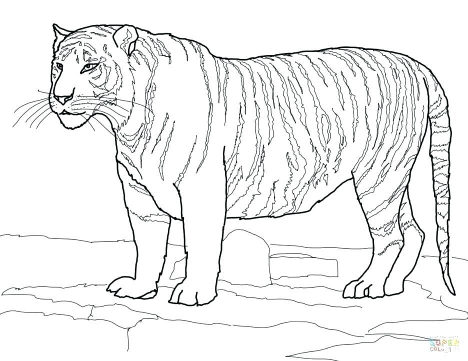 936x722 Auburn Coloring Pages Auburn Coloring Pages Adult Tiger Coloring