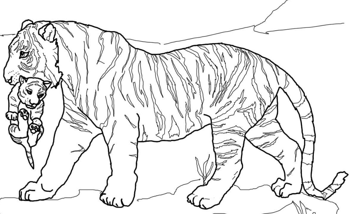 Tiger Coloring Pages For Preschool at GetDrawings | Free ...