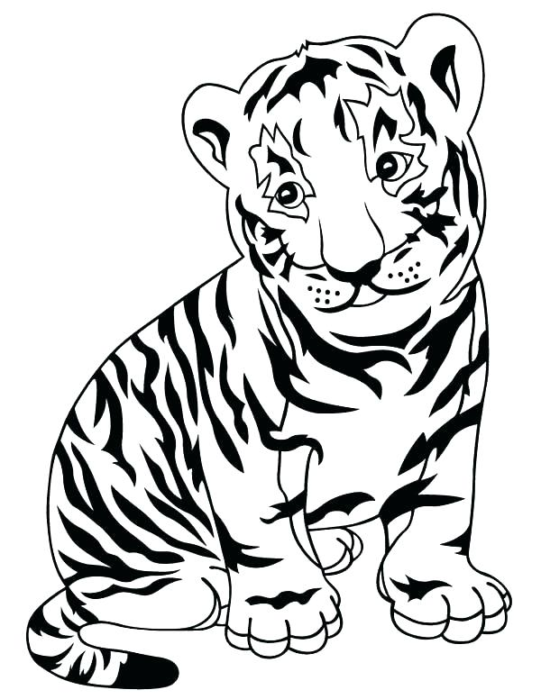 600x776 Tiger Without Stripes Coloring Page Zebra Coloring Page Adorable
